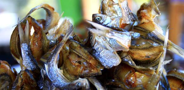 Tips-agar-mengolah-Ikan-Asi